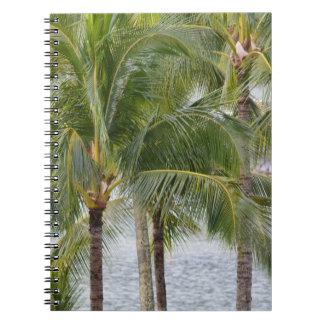 Caderno Palmeiras tropicais de Havaí
