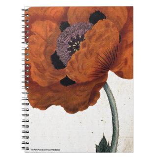 Caderno Papoila oriental