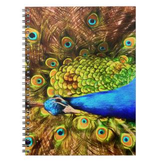 Caderno Pavão colorido