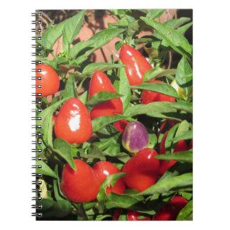 Caderno Pimentas de pimentão vermelho que penduram na