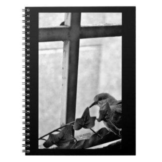 Caderno Pouca pomba
