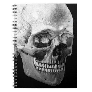 Caderno principal de esqueleto