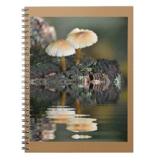 Caderno Reflexões do cogumelo