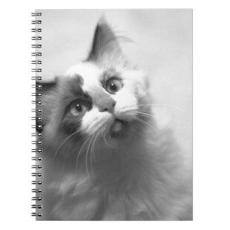 Caderno Retrato preto e branco do gatinho