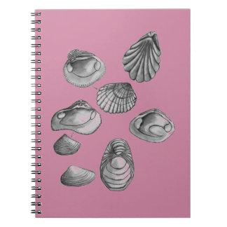 Caderno Shell esboça