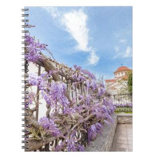 Caderno Sinensis azul de florescência das glicínias na