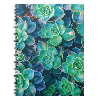 Caderno Succulents, Succulent, cacto, cactos, verde,