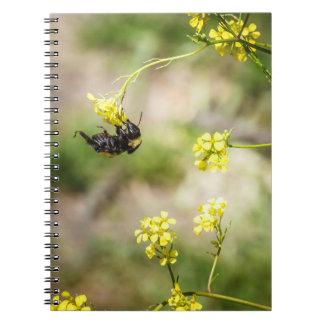 Caderno Suspensão ao redor