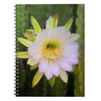 Caderno tímido da beleza
