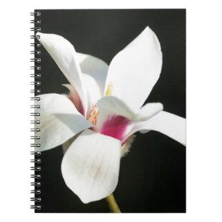 Caderno Tornar-se
