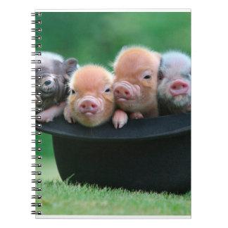 Caderno Três porcos pequenos - três porcos - chapéu do
