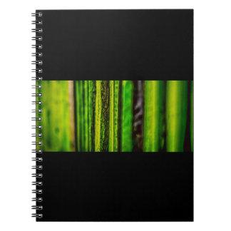 Caderno verde da foto