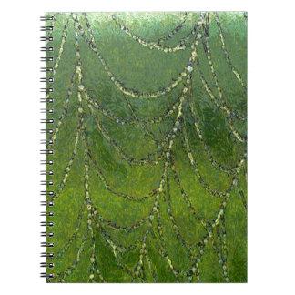 Caderno Web de aranhas