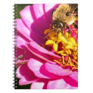 Cadernos abelha e inseto que estão em uma flor roxa