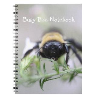 Cadernos Abelha ocupada