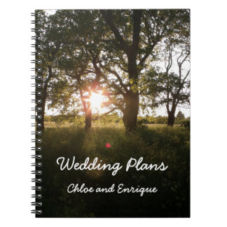Cadernos Árvores da silhueta e livro dos planos do