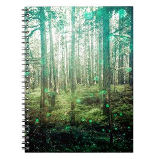 Cadernos Árvores de floresta - no teste padrão das madeiras