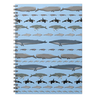 Cadernos Baleias