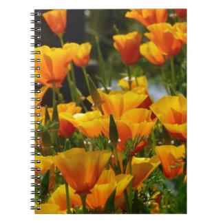 Cadernos Califórnia alaranjada Poppies_3.1