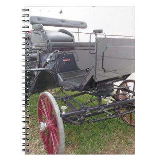 Cadernos Carruagem antiquado do cavalo na grama verde