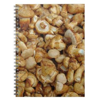 Cadernos Chantarelles