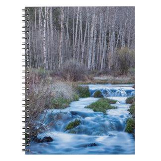 Cadernos Derretimento do primavera fora do fluxo para baixo