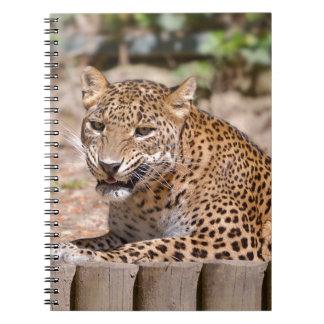 Cadernos Encontro do leopardo