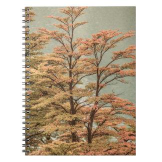Cadernos Espiral Árvores coloridas cena da paisagem no lago glacier