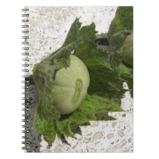 Cadernos Espiral Avelã verdes frescas no assoalho