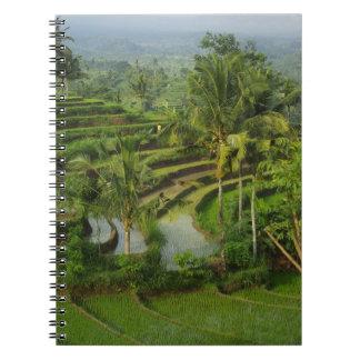 Cadernos Espiral Bali - ricefields e palmas novos do terraço