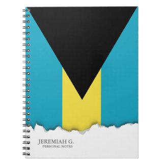Cadernos Espiral Bandeira baamiana clássica