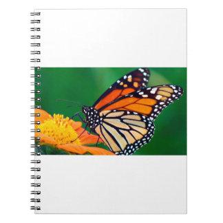 Cadernos Espiral Borboleta de monarca bonita