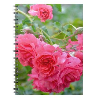 Cadernos Espiral Buquê do rosa do rosa