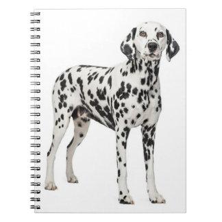 Cadernos Espiral Cão de filhote de cachorro Dalmatian do amor - cão