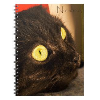Cadernos Espiral Cara bonito do gato do texto | de Templated