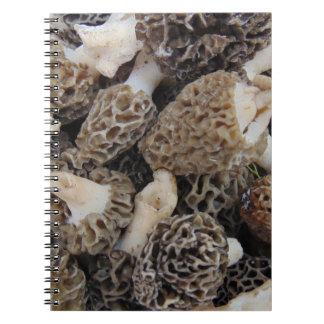 Cadernos Espiral Cogumelos do Morel