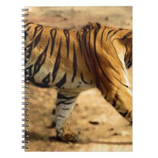 Cadernos Espiral Desengaço de Tigres dos alugueres