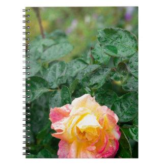 Cadernos Espiral Desvanece-se o outono molhado aumentou com borrão