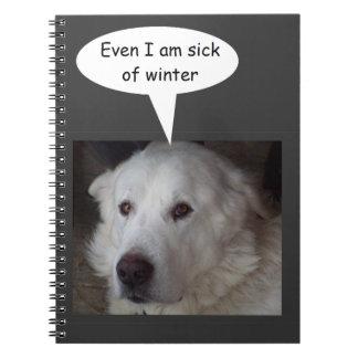 Cadernos Espiral Doente de grandes Pyrenees do inverno