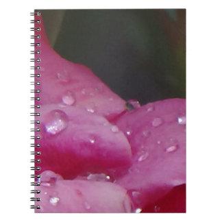 Cadernos Espiral Flor da gota da chuva