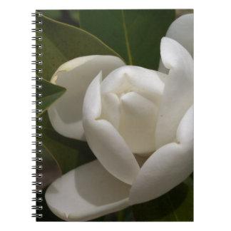 Cadernos Espiral flor em botão branca de magnólia do sul