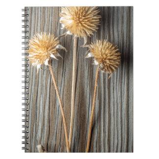 Cadernos Espiral Flor secada de Sun