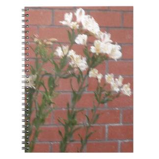 Cadernos Espiral Flores no tijolo