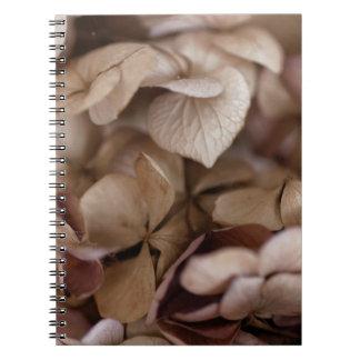 Cadernos Espiral Flores secas