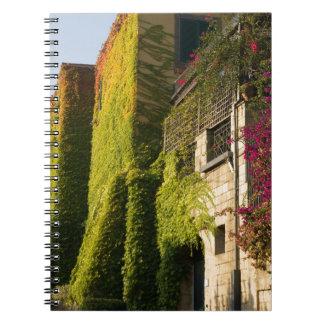 Cadernos Espiral Folhas coloridas em paredes da casa
