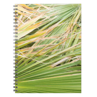 Cadernos Espiral Folhas de palmeira