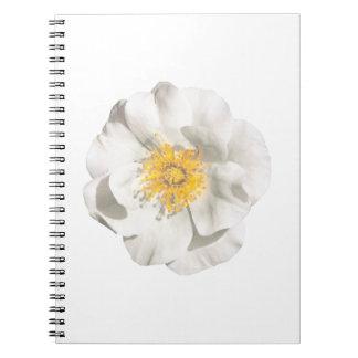 Cadernos Espiral Foto da flor branca
