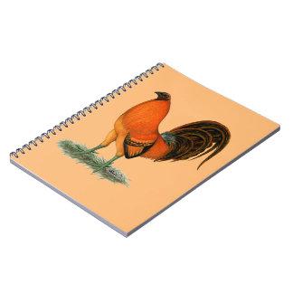 Cadernos Espiral Galo do vermelho do gengibre do Gamecock