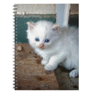 Cadernos Espiral Gatinho branco