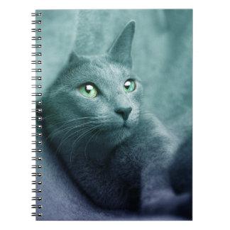 Cadernos Espiral Gato sonhador